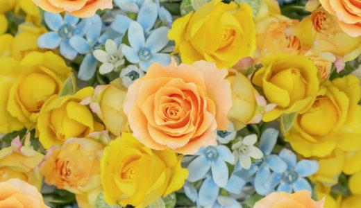 ハーバリウムを好きな花で!ドライフラワーの作り方を比較してみた