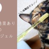 歯磨き できない 猫 歯磨きゼリー ジェル