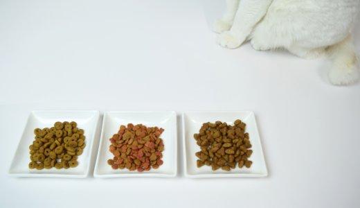 【飼い主必見!】猫にご飯の「待て」をしてみた。その教え方とは