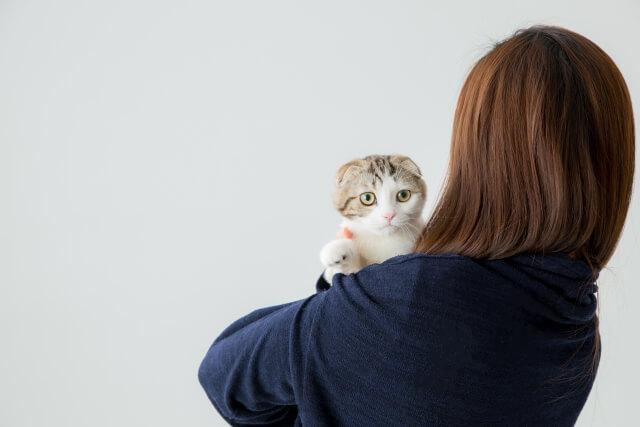 猫 オス 女性 好き