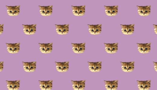 【2018年ver.猫好き必見!】ポール&ジョーの秋限定の新作が鬼可愛い件