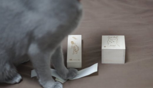 【レビュー】猫のひげケースと毛玉を入れる桐箱を買って使ってみた感想