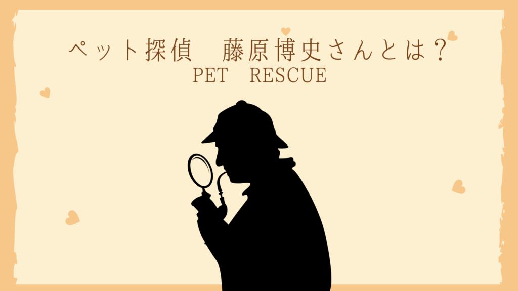 藤原 ペット 探偵