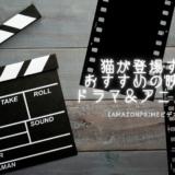 猫 おすすめ アニメ 映画 ドラマ おすすめ Amazonプライムビデオ