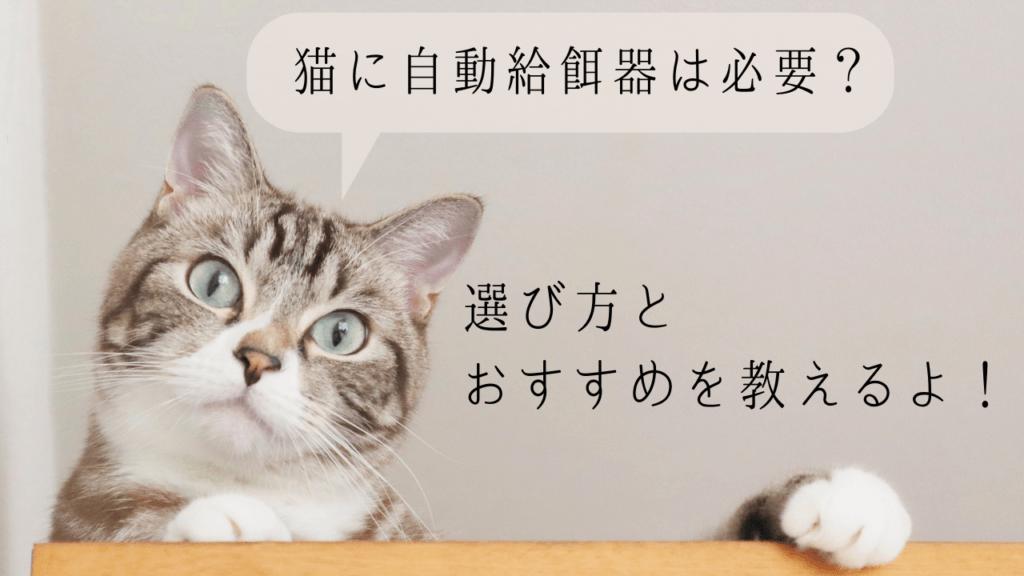 猫 自動給餌器 おすすめ 必要